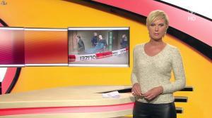 Kamilla Senjo dans Brisant - 27/01/14 - 04