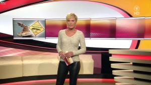 Kamilla Senjo dans Brisant - 27/01/14 - 06