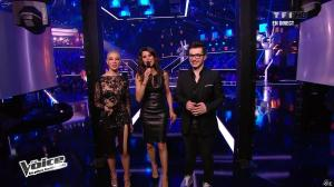 Karine Ferri dans The Voice - 13/04/13 - 20