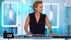 Caroline Roux dans C dans l Air - 17/10/14 - 02