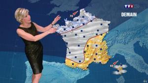 Evelyne Dhéliat à la Météo de 20h - 23/12/14 - 02