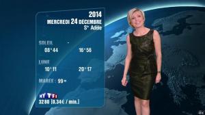 Evelyne Dhéliat à la Météo de 20h - 23/12/14 - 04
