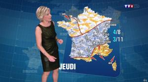 Evelyne Dhéliat à la Météo de 20h - 23/12/14 - 05