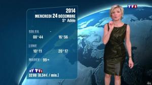 Evelyne Dhéliat à la Météo de 20h - 23/12/14 - 06