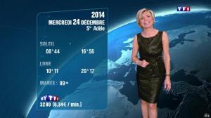 Evelyne Dhéliat à la Météo de 20h - 23/12/14 - 07