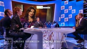 Natacha Polony dans le Grand Journal de Canal Plus - 24/11/14 - 03
