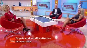 Sophie Audouin Mamikonian dans Toute une Histoire - 24/10/14 - 123