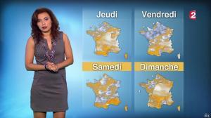 Anais Baydemir à la Météo de 13h - 08/12/15 - 03