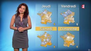 Anaïs Baydemir à la Météo de 13h - 08/12/15 - 04