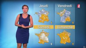 Anaïs Baydemir à la Météo de 20h - 10/11/15 - 05