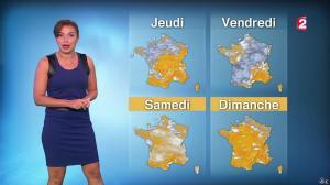 Anaïs Baydemir à la Météo de 20h - 10/11/15 - 07