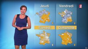 Anaïs Baydemir à la Météo de 20h - 10/11/15 - 08