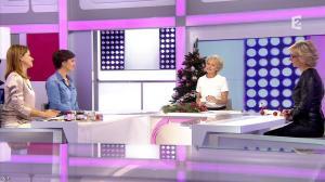 Sylvie Adigard dans C est au Programme - 15/12/15 - 01
