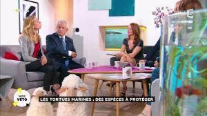 Valérie Durier dans la Quotidienne - 13/05/15 - 21