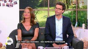 Valérie Durier dans la Quotidienne - 13/05/15 - 22