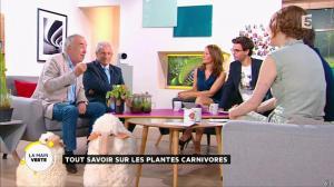 Valérie Durier dans la Quotidienne - 15/05/15 - 09