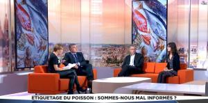 Bénédicte Le Chatelier dans LCI et Vous - 15/11/16 - 55