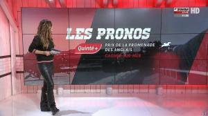 Amélie Bitoun dans un Jour aux Courses - 11/12/17 - 07