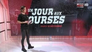 Amélie Bitoun dans un Jour aux Courses - 12/12/17 - 03