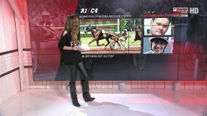 Amélie Bitoun dans un Jour aux Courses - 14/11/17 - 03