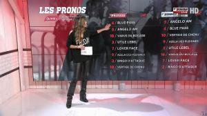 Amélie Bitoun dans un Jour aux Courses - 14/11/17 - 07