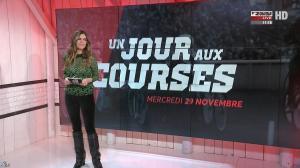 Amélie Bitoun dans un Jour aux Courses - 29/11/17 - 01