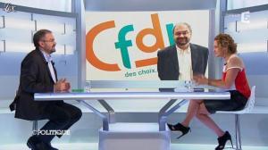 Caroline Roux dans C Politique - 25/11/12 - 17