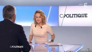 Caroline Roux dans C Politique - 11/01/13 - 11