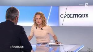 Caroline Roux dans C Politique - 11/01/13 - 12