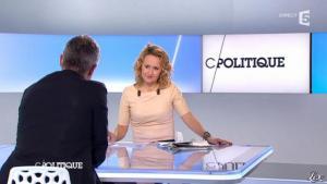 Caroline Roux dans C Politique - 11/01/13 - 25