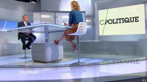 Caroline Roux dans C Politique - 12/05/13 - 09