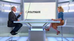 Caroline Roux dans C Politique - 12/05/13 - 14