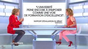 Caroline Roux dans C Politique - 21/04/13 - 12