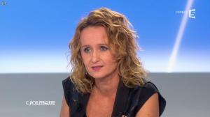Caroline Roux dans C Politique - 27/10/13 - 09