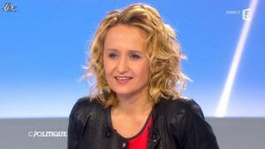 Caroline Roux dans C Politique - 28/04/13 - 09