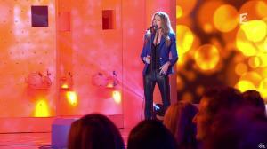 Céline Dion dans Vivement Dimanche - 08/12/13 - 06