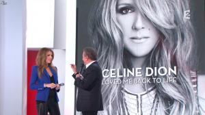 Céline Dion dans Vivement Dimanche - 08/12/13 - 10