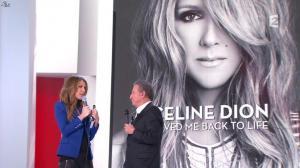 Céline Dion dans Vivement Dimanche - 08/12/13 - 12