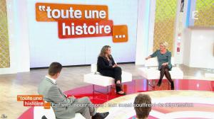 Sophie Davant dans Toute une Histoire - 01/11/13 - 03