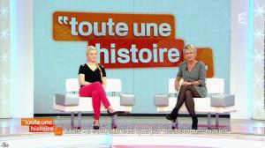 Sophie Davant dans Toute une Histoire - 12/11/13 - 02