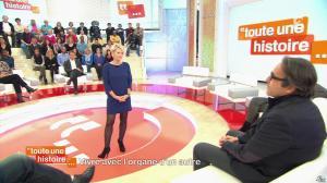 Sophie Davant dans Toute une Histoire - 21/11/13 - 05