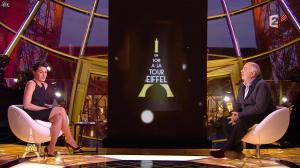 Alessandra Sublet dans Un Soir à la Tour Eiffel - 10/12/14 - 03