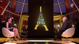 Alessandra Sublet dans Un Soir à la Tour Eiffel - 10/12/14 - 06