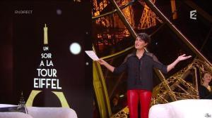 Alessandra Sublet dans Un Soir à la Tour Eiffel - 29/10/14 - 02