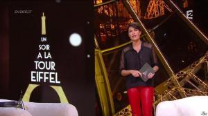 Alessandra Sublet dans Un Soir à la Tour Eiffel - 29/10/14 - 04