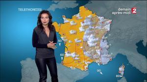 Anaïs Baydemir à la Météo de 13h - 05/12/14 - 09