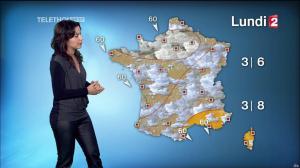Anaïs Baydemir à la Météo de 13h - 05/12/14 - 13