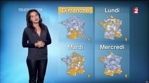 Anaïs Baydemir à la Météo de 13h - 05/12/14 - 15