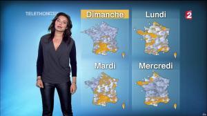 Anaïs Baydemir à la Météo de 13h - 05/12/14 - 22