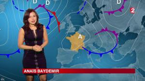 Anais Baydemir à la Météo de 20h - 04/01/15 - 01